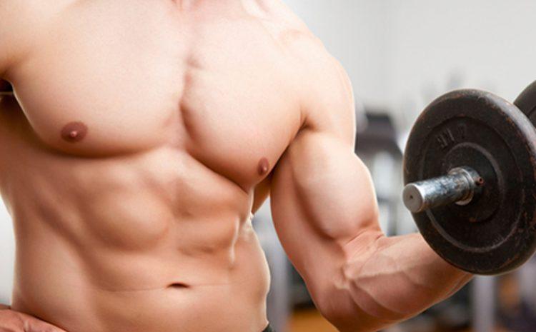 Лучшие упражнения для развития груди